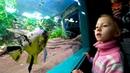 Приехали в океанариум! Как и где отдохнуть с ребенком