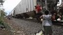 Tren en La Patrona
