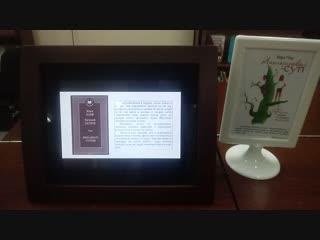 Книжный нон-стоп в ЦДБ г. Йошкар-Олы