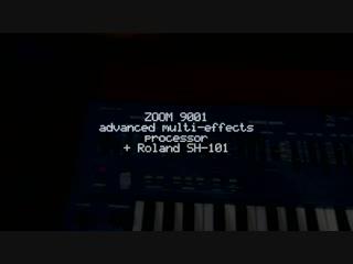 Zoom 9001 Advanced multi-effects processor + Roland SH-101