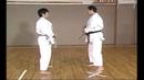 Karate Kihon Ippon Kumite 14 16