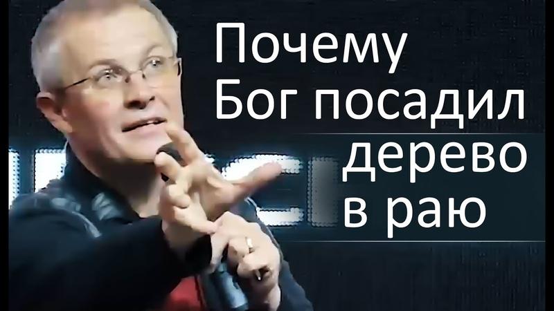Почему Бог посадил дерево в раю - Александр Шевченко