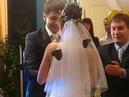 Салют из живых тропических бабочек на свадьбе