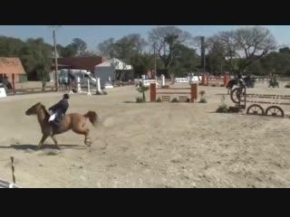 Конкур на вылет. что делать? выезжать лошадь. а кто умееет?