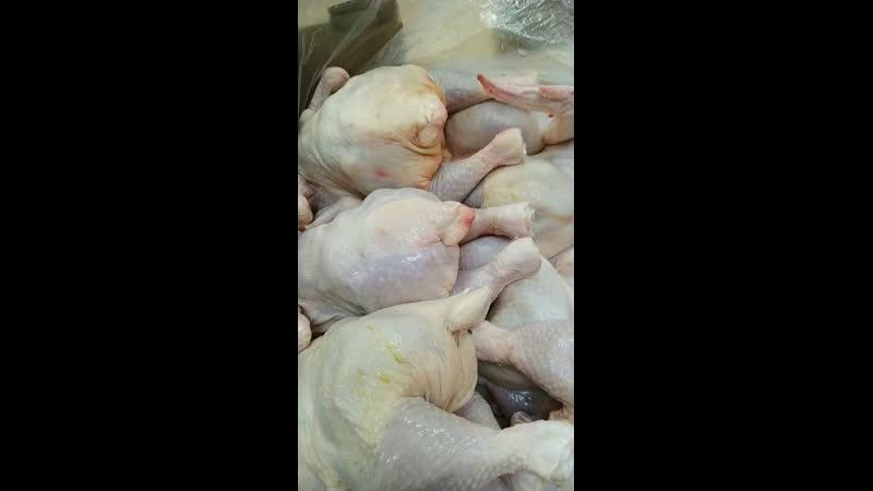 Цыплята охлажденочка 150 руб за кг