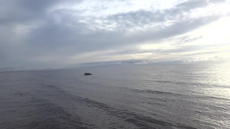 Октябрь, Финский залив