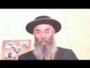 43.1 Тора. От Адама до Потопа Текст на Сайте