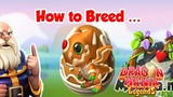 How to breed Ginger Dragon of the Week! , Dragon Mania Legends part 1382 HD