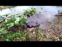 Открытие охоты на бобра капканами - осень 2018 год