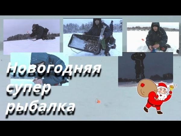 Новогодняя СУПЕР РЫБАЛКА! Тут есть и ЩУКА и ОКУНЬ - Болен Рыбалкой №621
