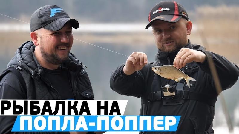 Рыбалка на ПОПЛА ПОППЕР Уловистая снасть для ловли белой рыбы на спиннинг