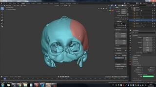 blender 2.8 cranio