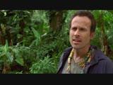 Элвин и бурундуки 3 - Дублированный трейлер