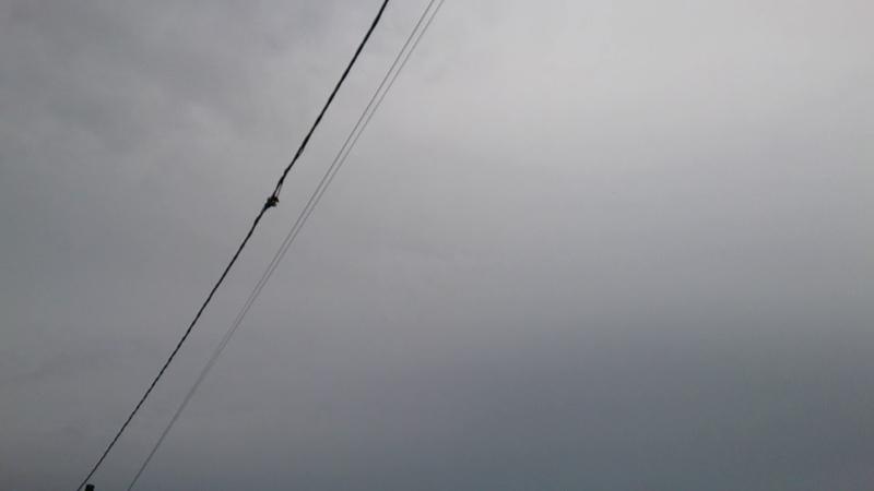 Tanda Tanda Mau Hujan (KOTA SIBOLGA)
