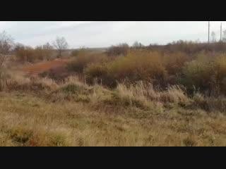 Баги на гонках в Тулово, Витебская область, сбила судью.