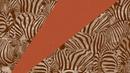 FAULHABER feat. Jake Reese - Savannah (Club Mix)