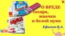 📛📛 О вреде сахара, жвачки и белой муки Ефимов В.А.