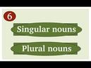 Singular and plural nouns.