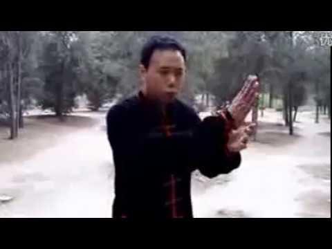 八极拳 基本拳法和掌法 Baji Quan Basic Boxing Palm Method