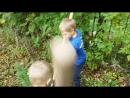 Каждый год в день рождения Пересвета сажем деревья или кустарники. В Этот раз посадили два куста черноплодной рябины в детском