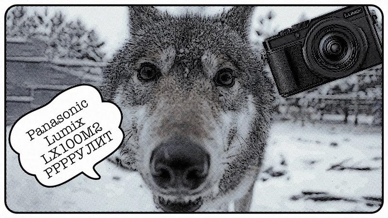 Чуть не съели волки пока тестировал камеру! Обзор и тест Panasonic Lumix LX100M2 (DC-LX100M2EE)