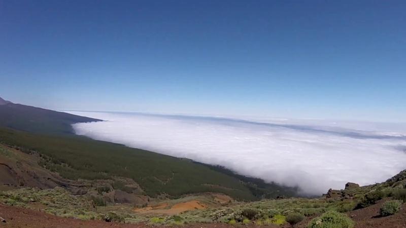 Отдых на Тенерифе 2019 || Tenerife Canary Islands