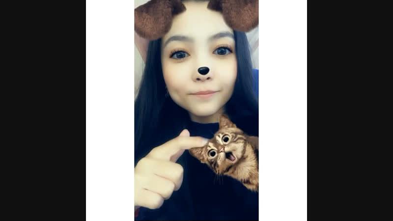 W cat