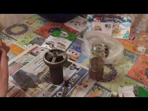 Заготовка Перчика