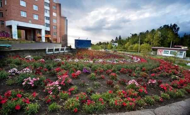 Усть-Илимск. Цветы под «Часами» (ул. Мечтателей, 21)