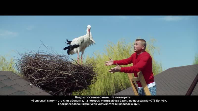 Реклама Мтс Тв Аист.mp4