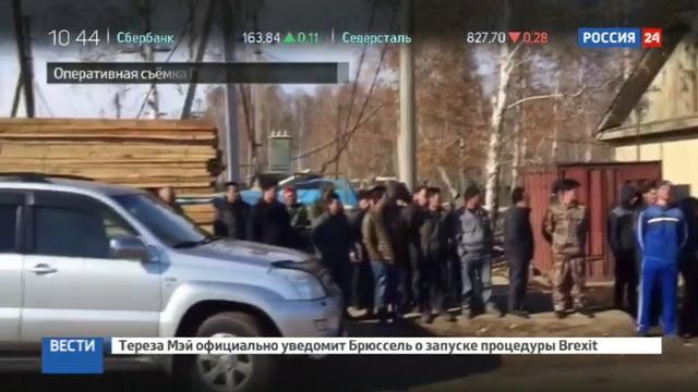 Новости на Россия 24 • Черных лесорубов поймали в Сибири