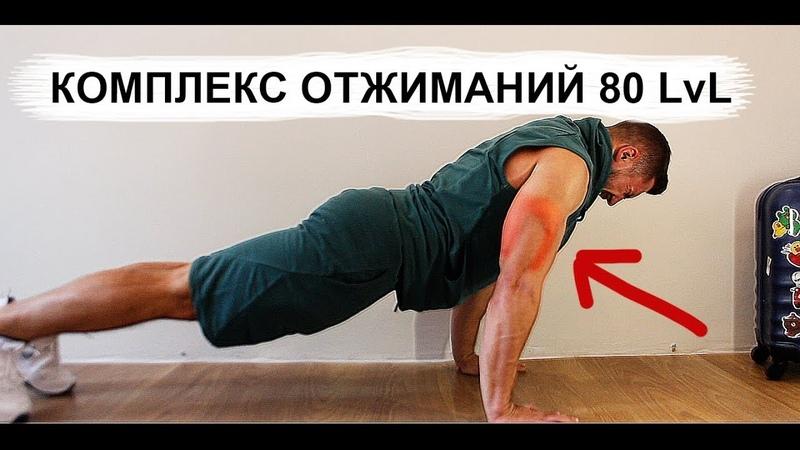 КОМПЛЕКС ОТЖИМАНИЙ 80 LvL на 30 ДНЕЙ набор мышечной массы
