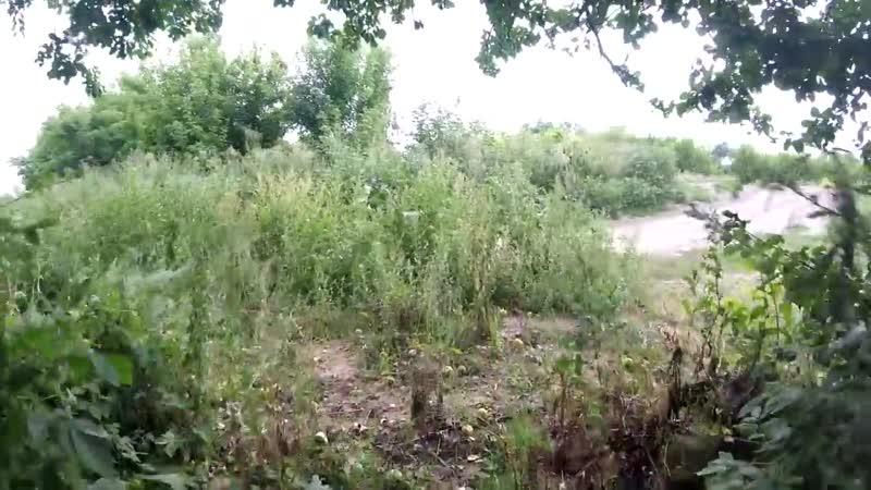Заброшенный сахарный завод, больница и НИИ сельского хозяйства