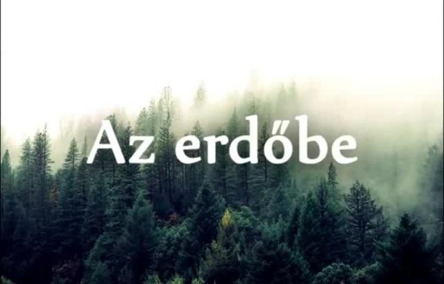 Az Erdő Titka
