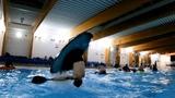 Swimming pool kayaking session!
