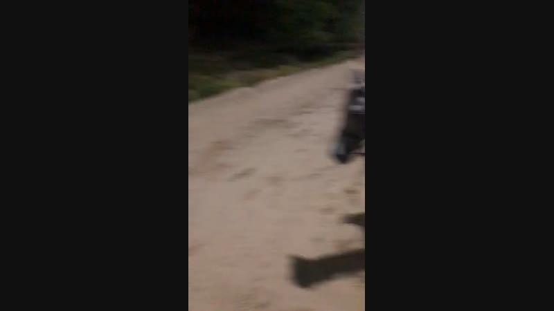 Верховая езда 🐴🐴🐴