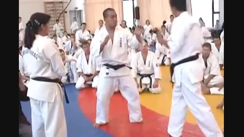 Ашихара каратэ Семинар Канте Ашихара Хиденори сына основателя для черных поясов 1 часть 0