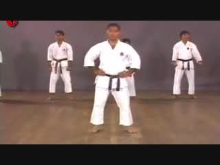 Kenneth Funakoshi kihon in Karate (Кеннет Фунакоши - кихон в каратэ)