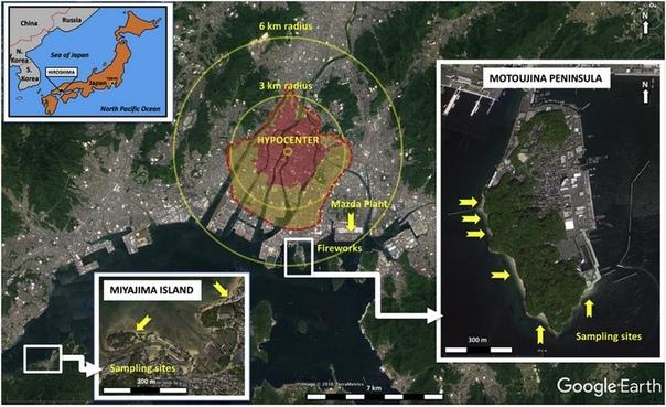 Хиросимиты странные артефакты, рожденные пламенем ядерной бомбы Атомные бомбы, обрушившиеся на печально известные всем японские населенные пункты Хиросиму и Нагасаки летом 45-го, навсегда