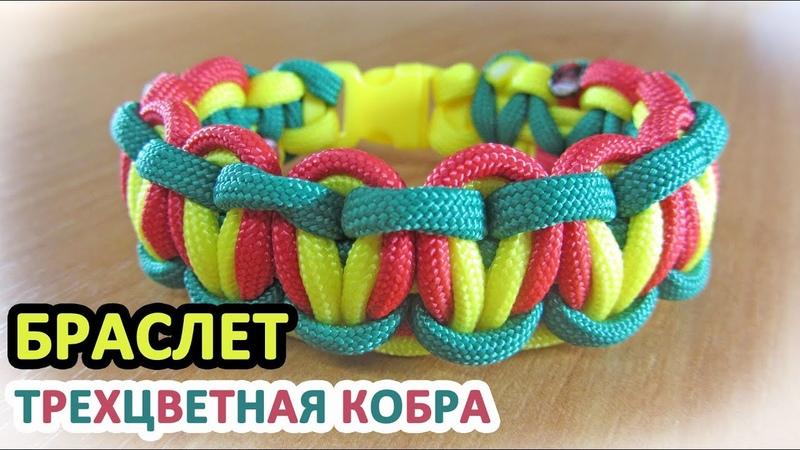 Браслет из паракорда Трехцветная кобра Paracord bracelet Tricolor Solomon