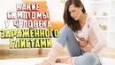 Какие симптомы у человека зараженного глистами