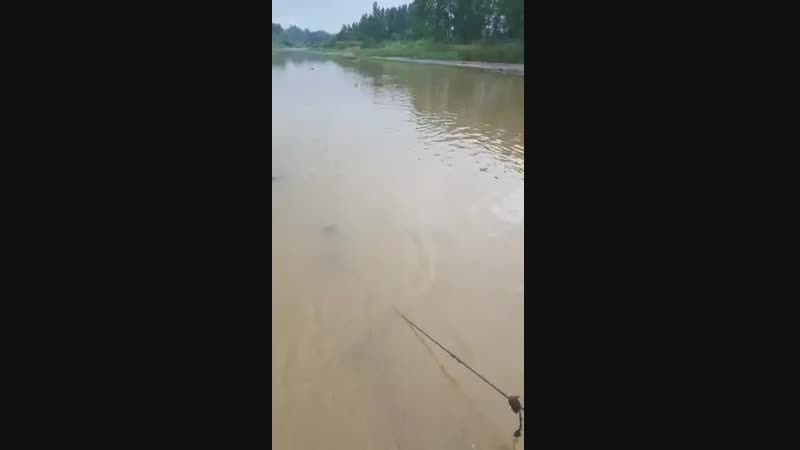 Cagayan de oro city of province deaf mute is death in river