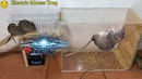 Best Electric Mouse Trap/Electric Mouse/Rat Trap Work With Battery 12V/Mouse Reject