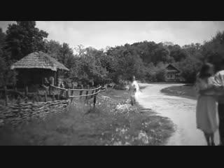 Сила птаха, била крыла на долони...красивая украинская народная песня