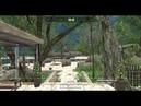 Crysis Wars servers sistem,join NIGHT - 14.11.18 (part 3)