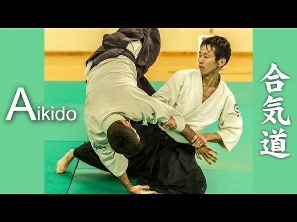 Dynamic Aikido - Freestyle techniques (Jiyu waza) in Monaco