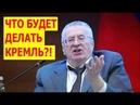 Жириновский раскрыл правду о фальсификации на ВЫБОРАХ