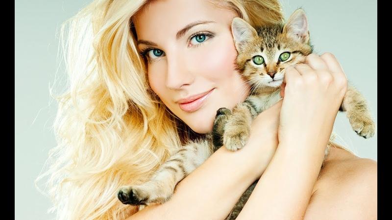 Какие 10 самых красивых пород кошек? 1 часть.