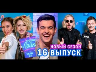 Вечерний лайк | Terry | Татарка | Максим Свобода & PLC