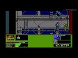 Ретрозор #61 Battletoads, Teenage Mutant Ninja Turtles The Manhattan Missions, Redneck Rampage